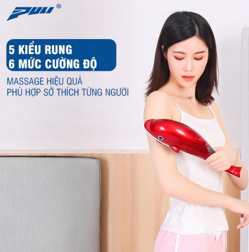 Máy massage cầm tay các heo 6 đầu Puli PL-608B